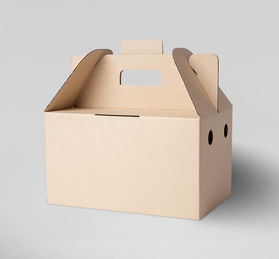 กล่องหูหิ้ว